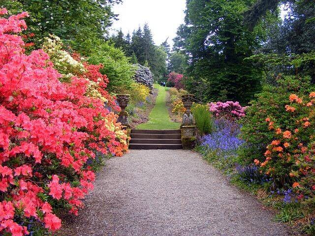 Garden and Lawn Reforms