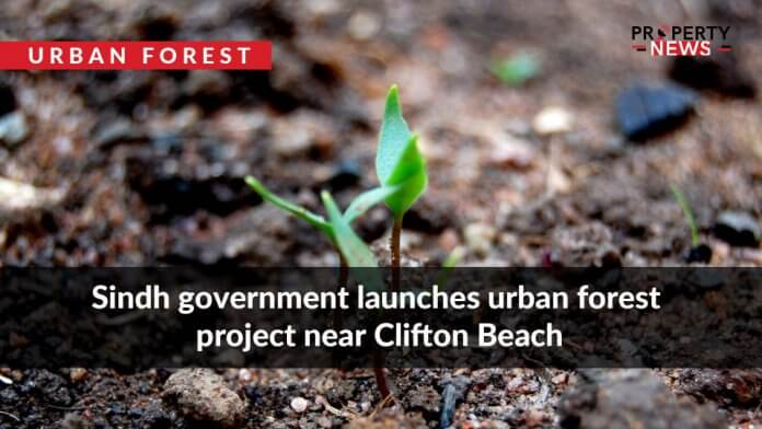 Sindh government launches urban forest project near Clifton Beach